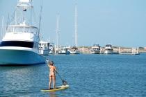 harbor paddle