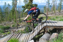 But back trestle rider