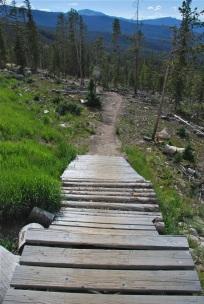 trestle Downhill trail