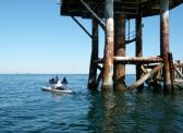 fishing at rig, port aransas
