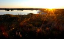 charlie's pasture sundown