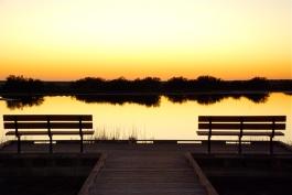 sunset at preserve