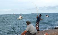 big fish, hooked, jetty