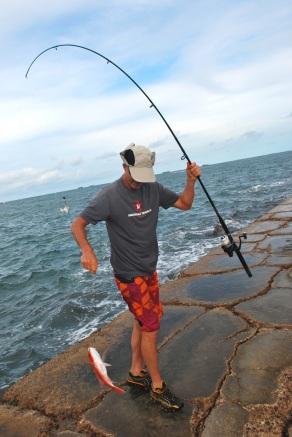 jetty catch