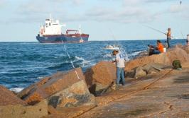 south jetty fishing, drum run
