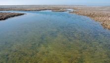 low tide M12