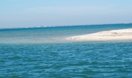 shell beach water